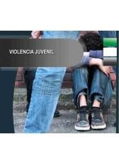 502. Violencia Juvenil.